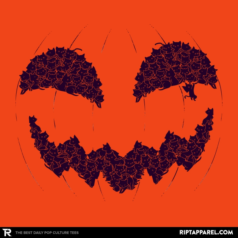 Pumpkin Cat - Anytime - Collection Image - RIPT Apparel