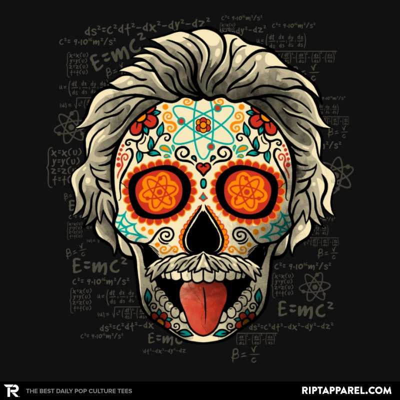 Calavera Einstein - Collection Image - RIPT Apparel