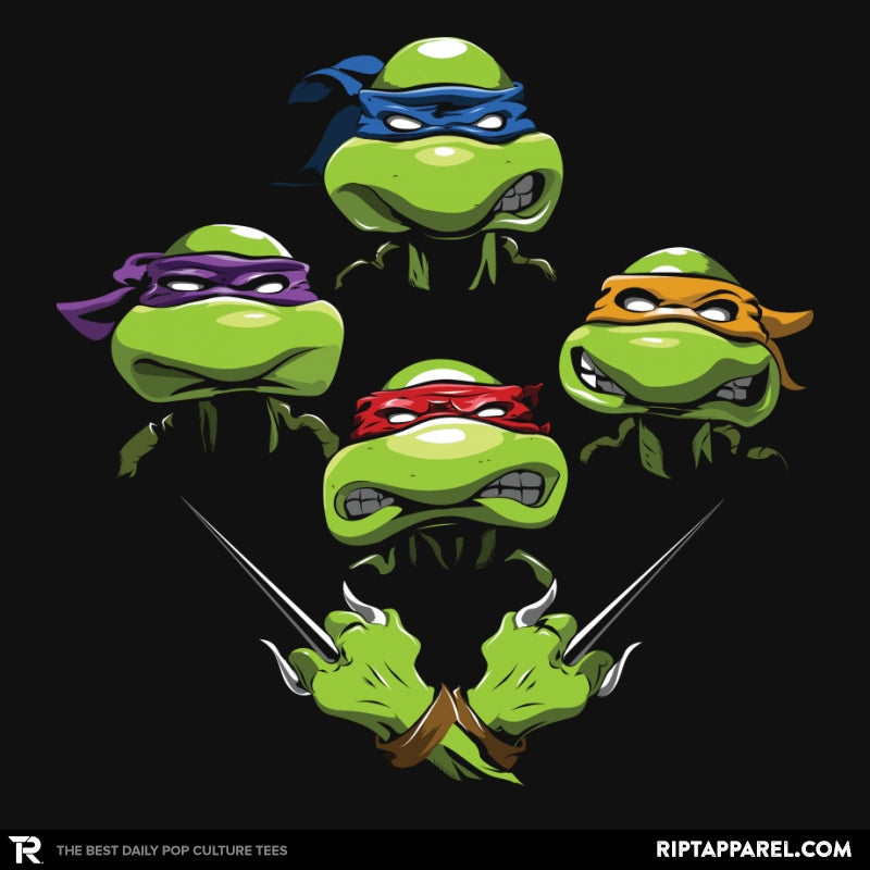 Turtle Rhapsody - Collection Image - RIPT Apparel