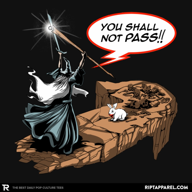 You Shall Not Pass Rabbit - Collection Image - RIPT Apparel