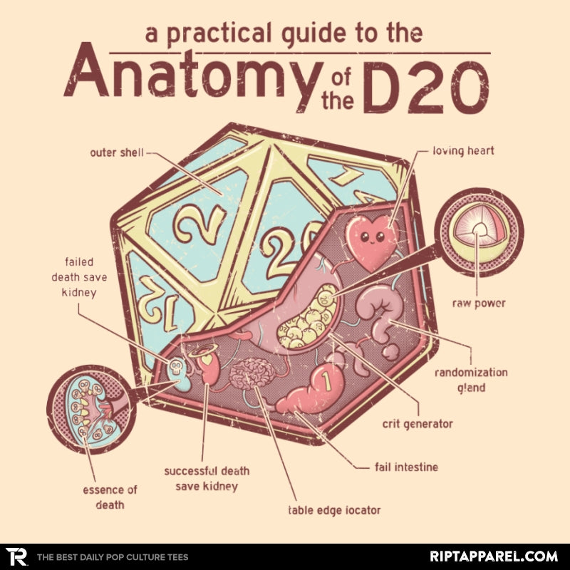 Anatomy of the D20 - Collection Image - RIPT Apparel