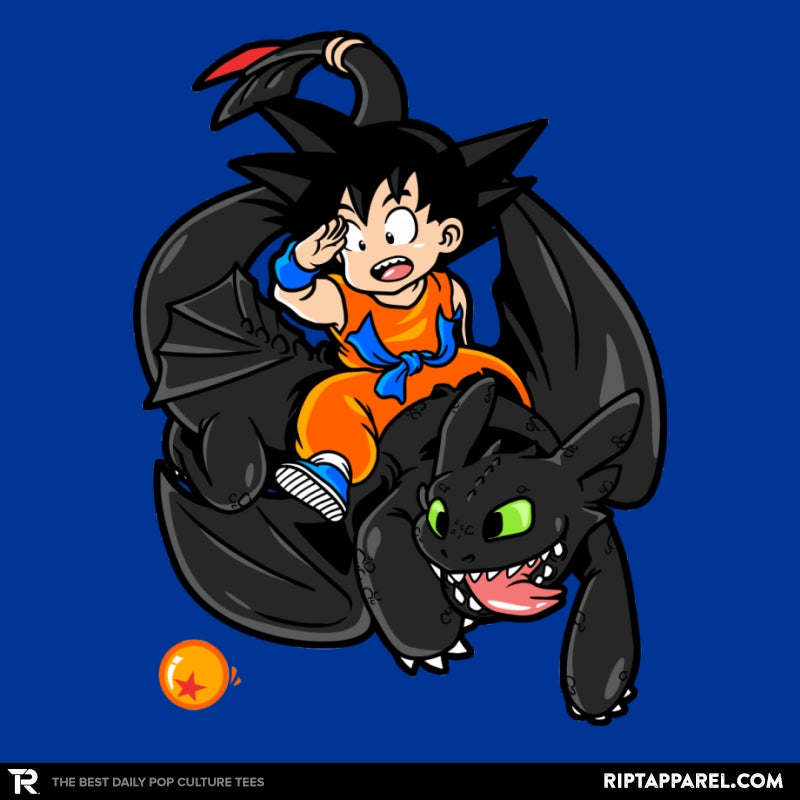How to Train your Dragon Ball - Collection Image - RIPT Apparel