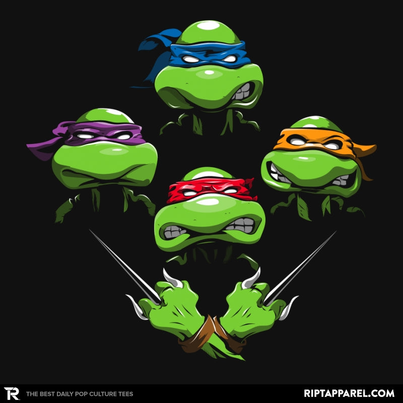Turtle Rhapsody - Best Seller - Collection Image - RIPT Apparel
