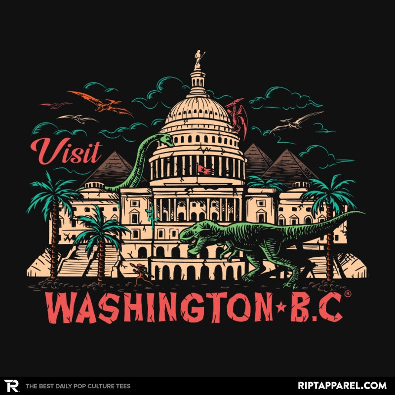 Washington B.C. - RIPT Apparel