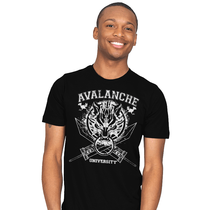 Avalanche University - Mens - T-Shirts - RIPT Apparel