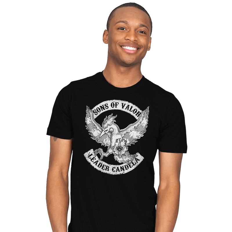 Sons of Valor - Mens - T-Shirts - RIPT Apparel