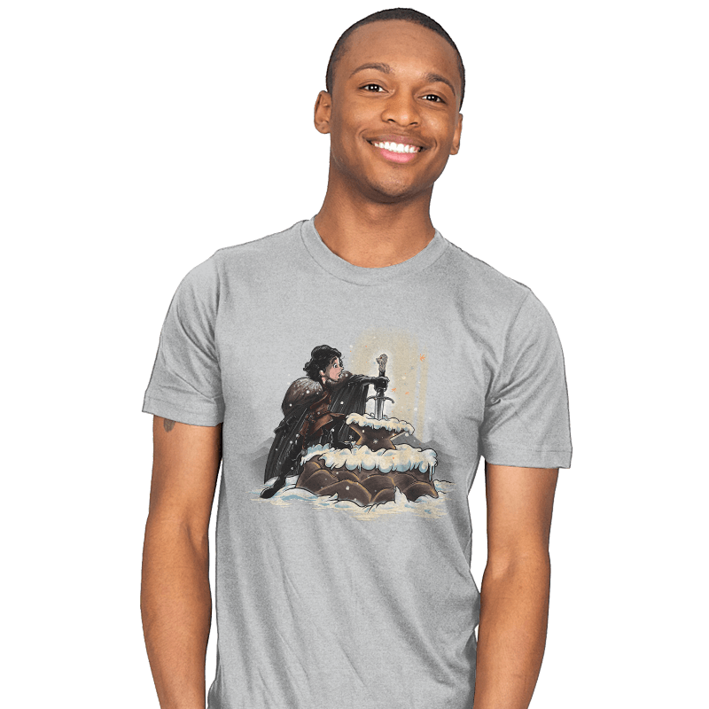 King In The North - Mens - T-Shirts - RIPT Apparel