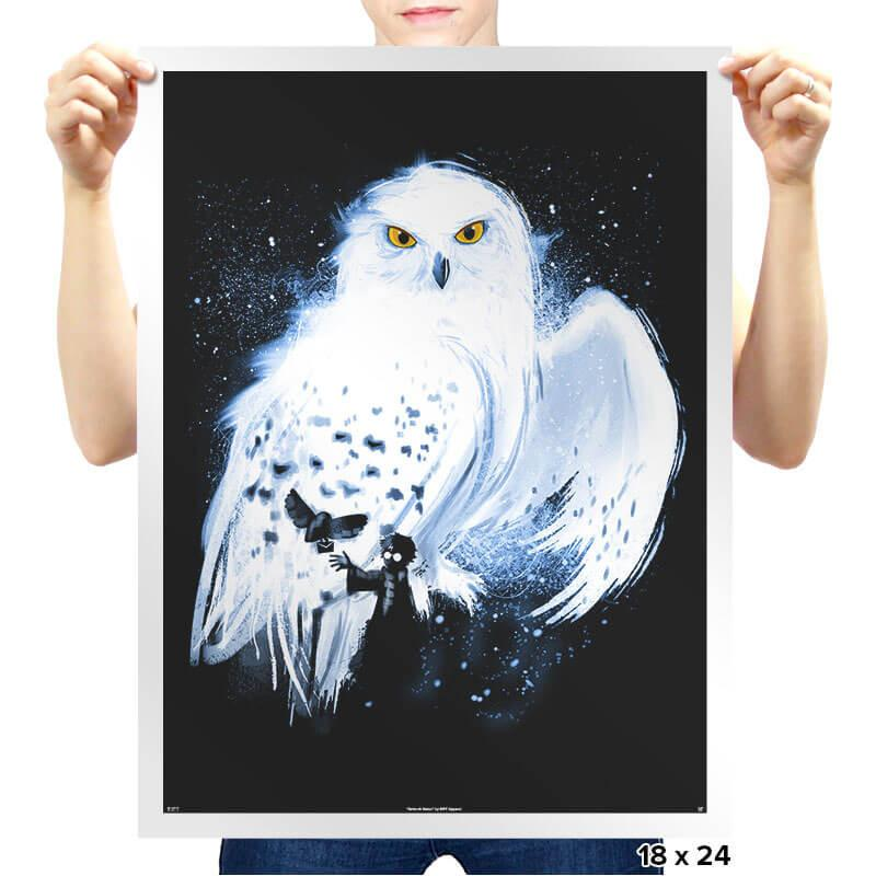 Mail by Owl - Prints - Posters - RIPT Apparel