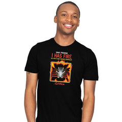 I Has Fire - Mens - T-Shirts - RIPT Apparel