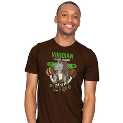 Viridian Gym - New Year's Evolutions - Mens - T-Shirts - RIPT Apparel