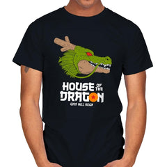 House of the dragon - Mens - T-Shirts - RIPT Apparel