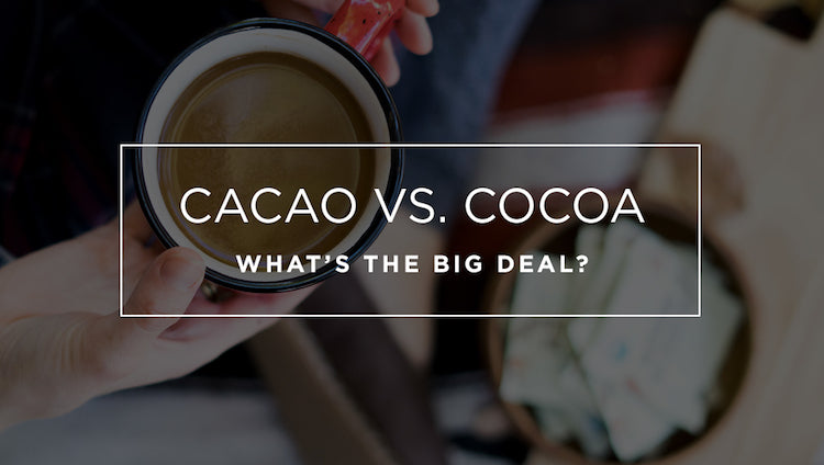 Difference between cacao vs cocoa