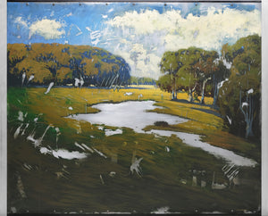 Meadow Lands 48x60