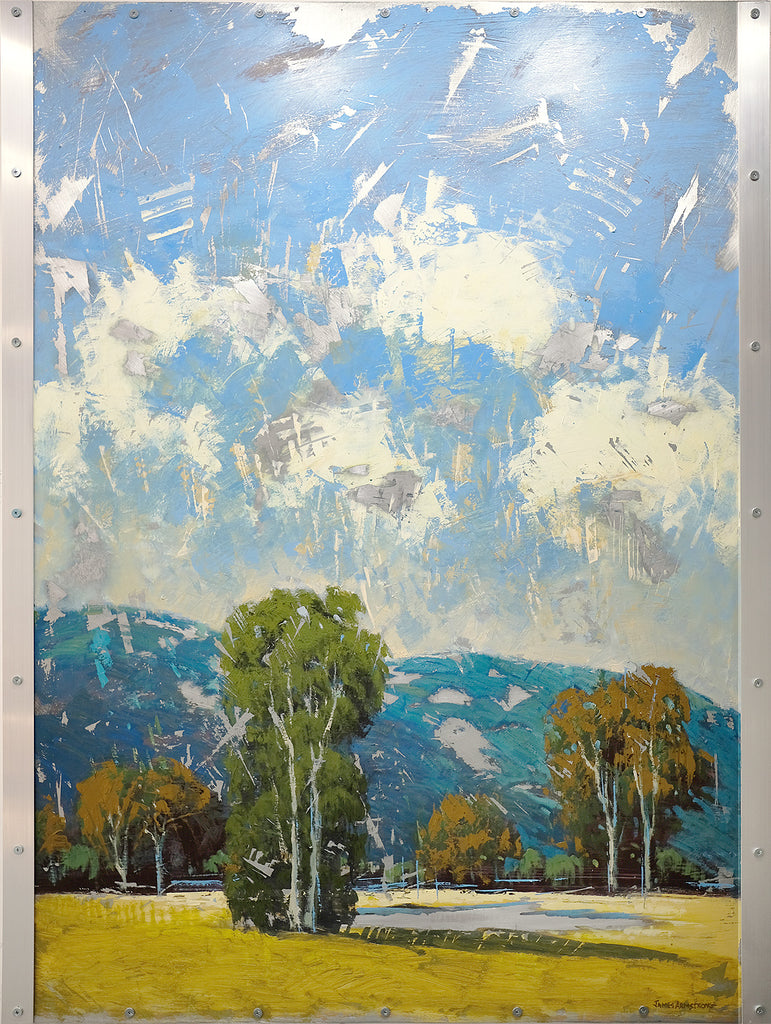 Knights Valley 48x36 SOLD