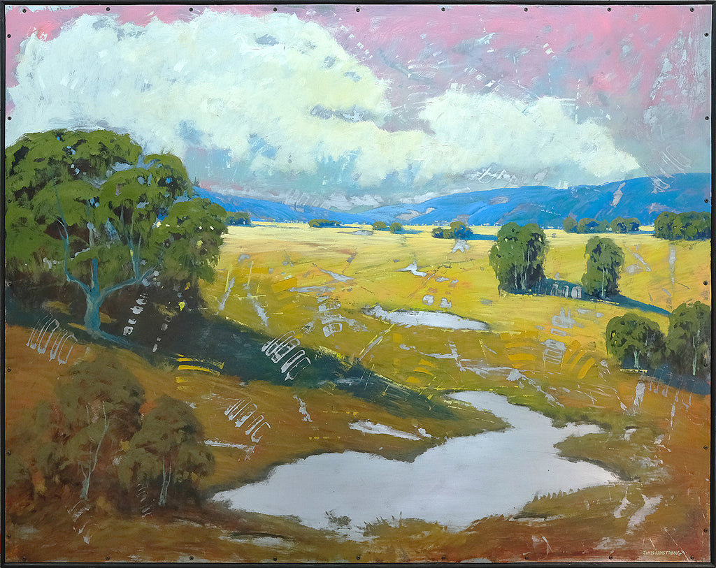 Sonoma Dry Creek Area 48x60