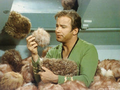 star trek tribbles, trouble with tribbles
