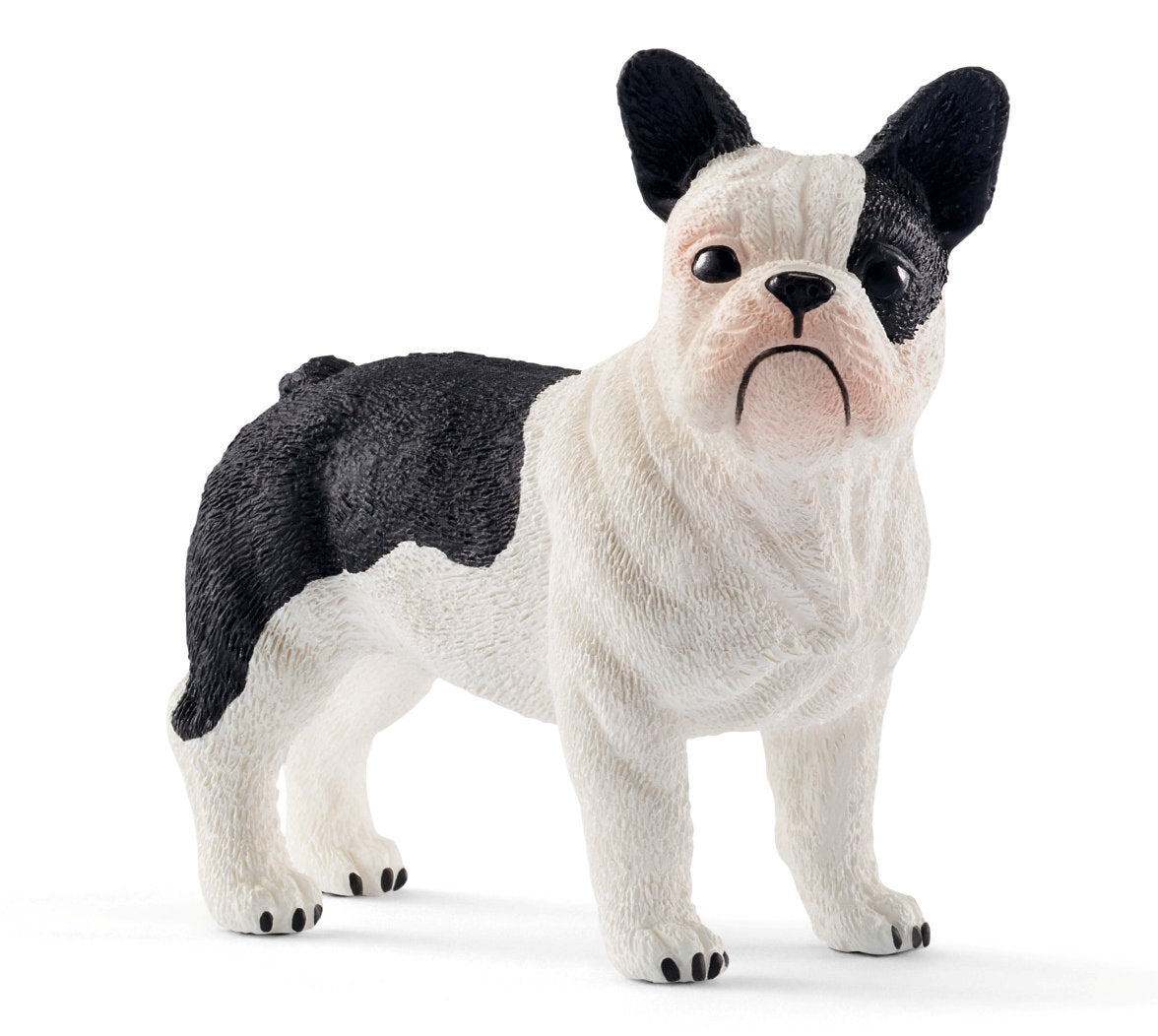 #13877S French Bulldog