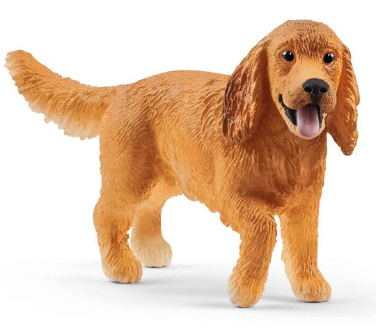 #13896S English Cocker Spaniel