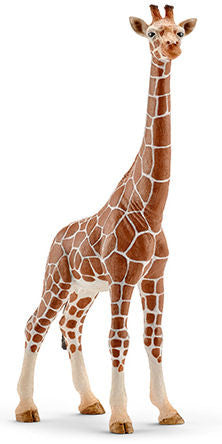 #14750 Giraffe, Female
