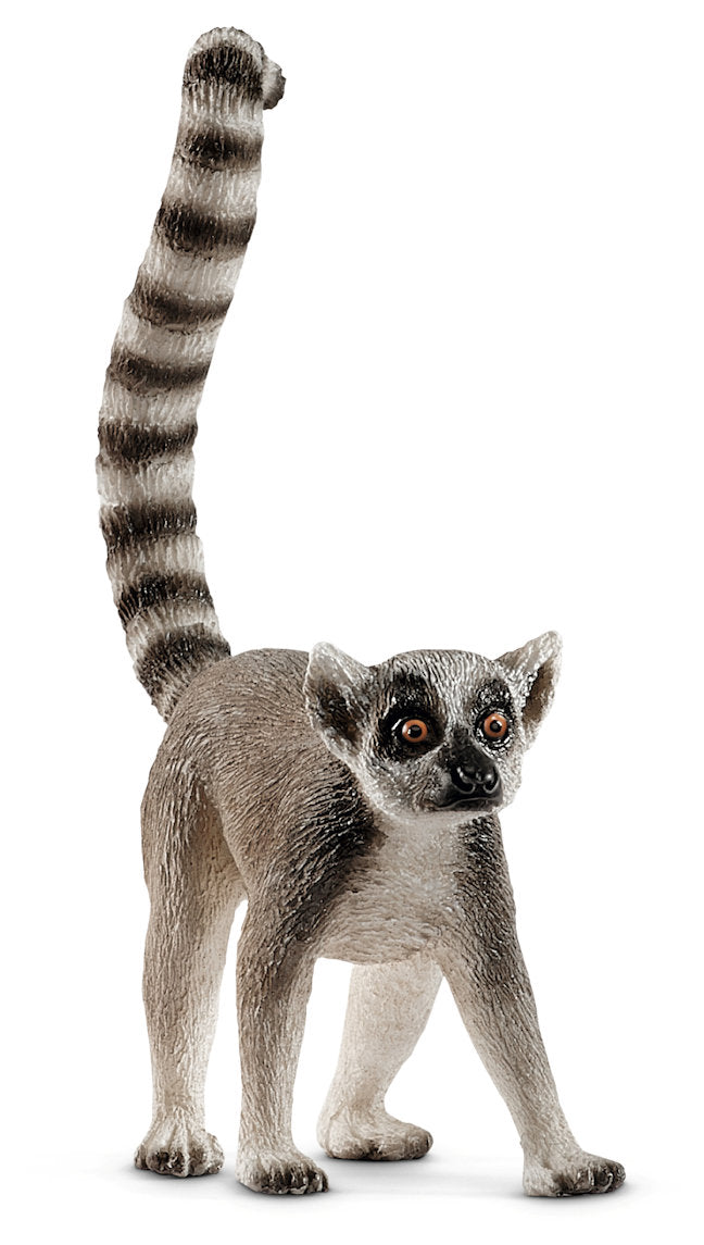 #14827 Ring-Tailed Lemur