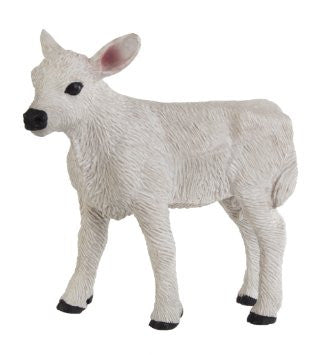 #161729 1/20 Brown Swiss Calf