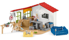 #42502 1/20 Veterinarian Practice with Pets Playset
