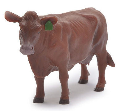 #500260 1/16 Red Angus Cow