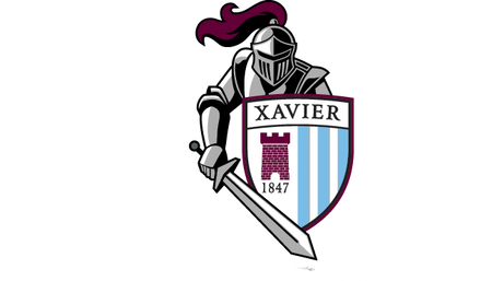 Xavier Knight Shop
