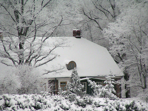 Anna Brigadere house in winter