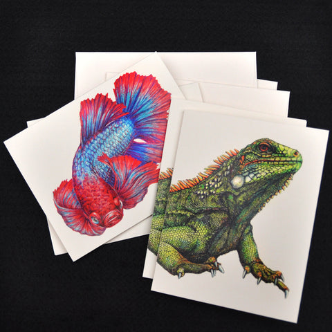 Blank Notecards, Set of Four - Proceeds to Charity - Original Drawings by Ilga - Iguana and Betta