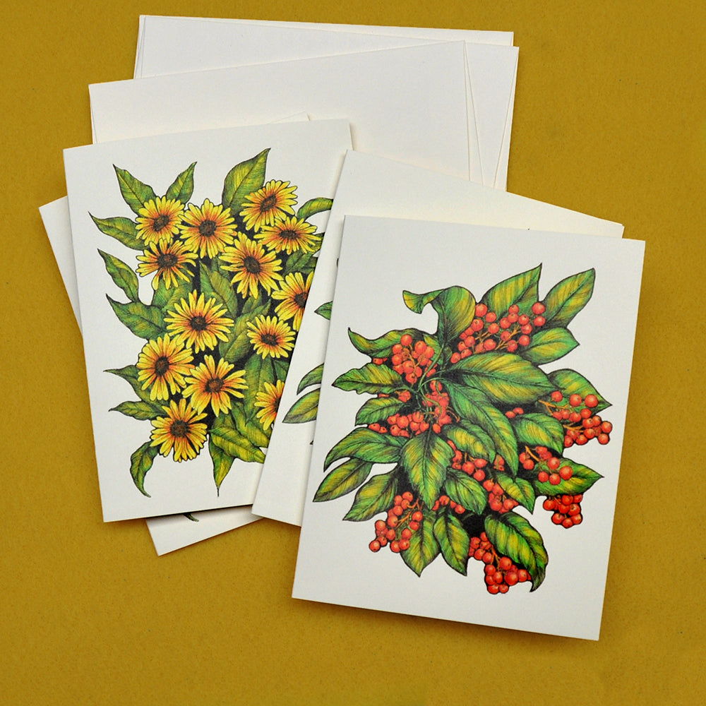 Daisies and berries drawings blank note cards