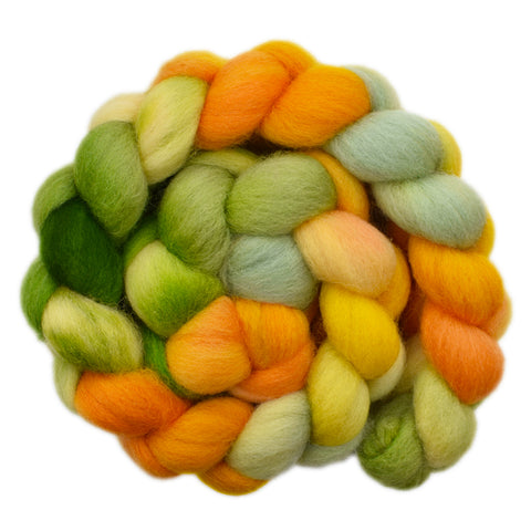 Cheviot Wool Roving - Bright Fields 2 - 4.2 ounces