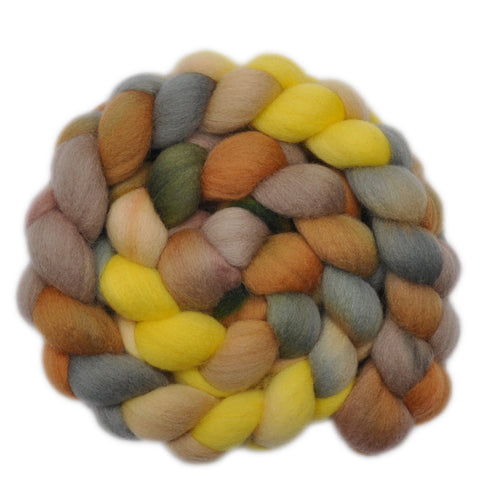 Falkland Wool Roving - The Early Bird 1 - 4.2 ounces