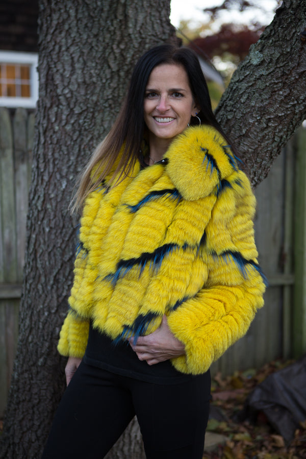 Fur Gold and Blue