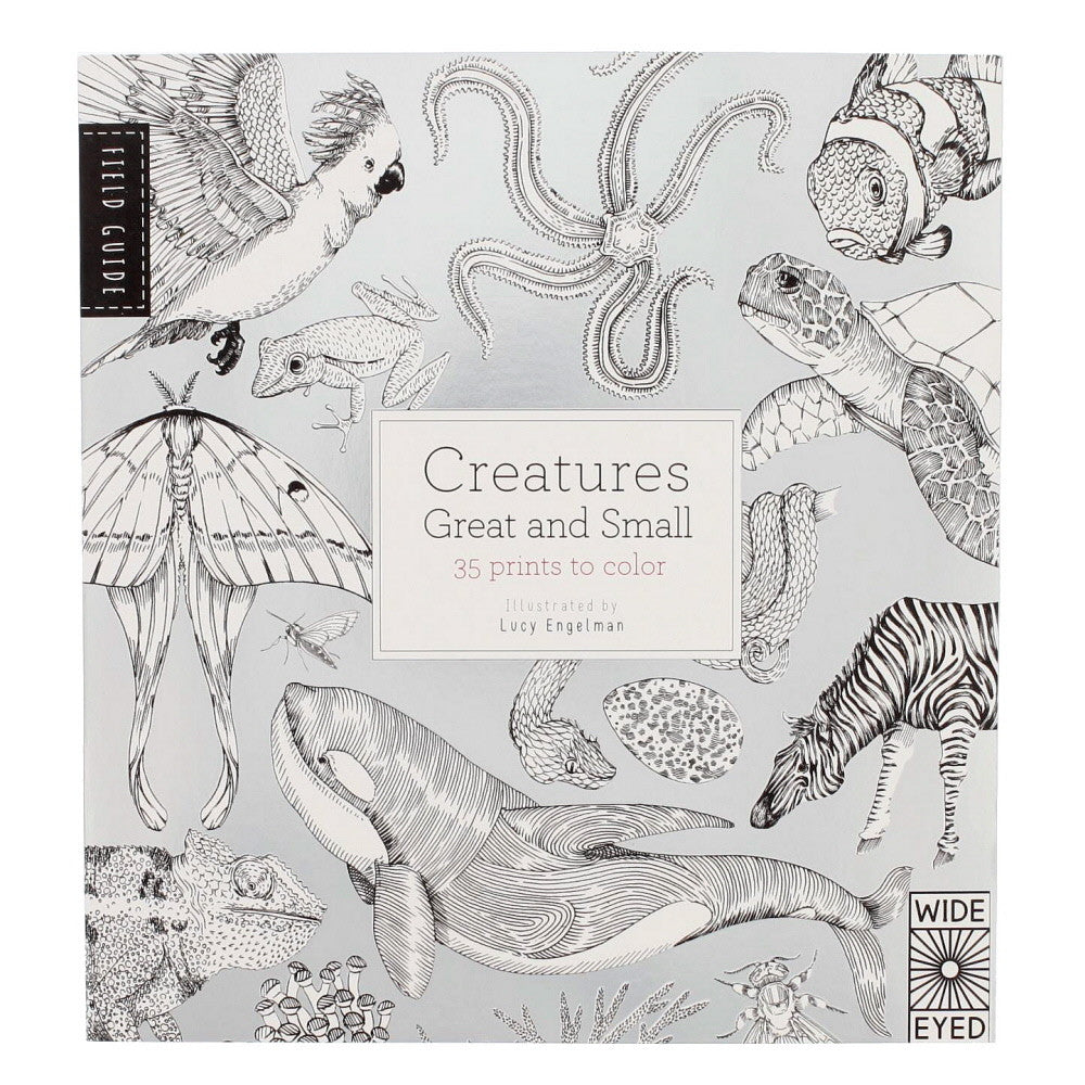 creatures great and small to color front nova natural toys crafts - Posters To Color