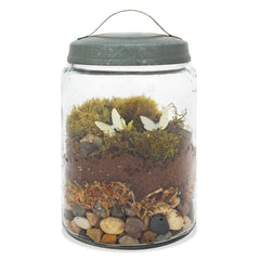 diy moss terrarium - Nova Natural Toys & Crafts - 2
