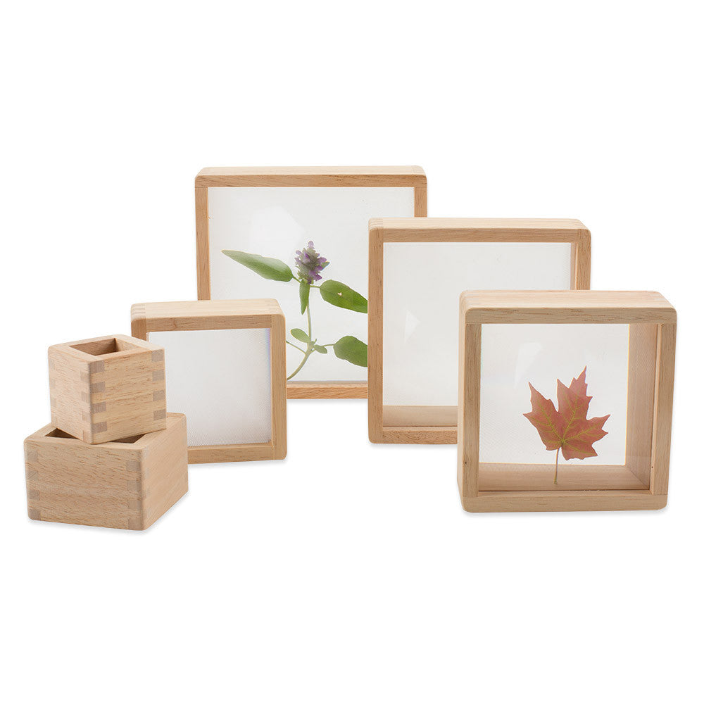 magnification blocks - nova natural toys & crafts
