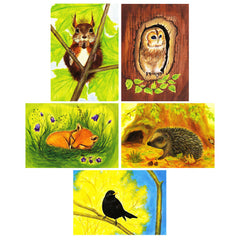 forest animal postcard set