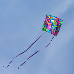backpack sled kite