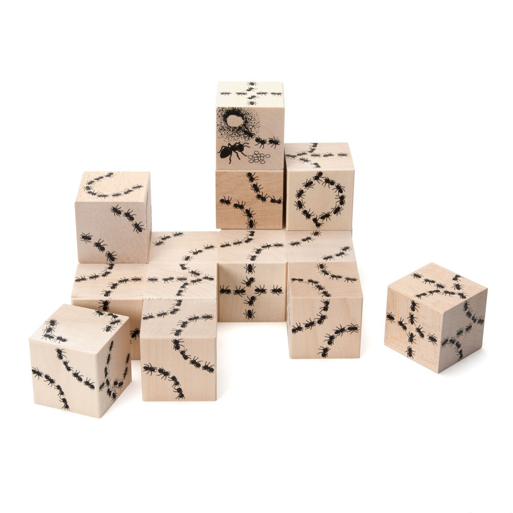 ant antics blocks - Nova Natural Toys & Crafts - 2
