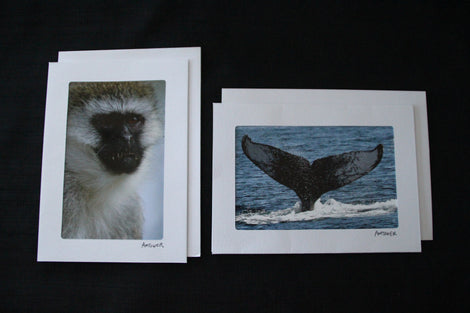 Greeting Cards and Matted Prints