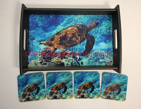 Turtle Tray and Coasters 8