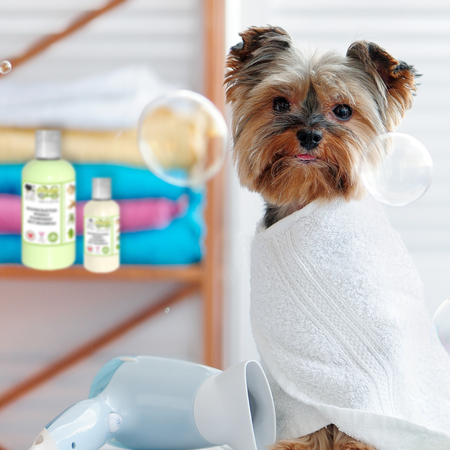 OverSoyed Fine Organic Products - Poshly Pampered Pets™ Artisan Handcrafted Pet Shampoo