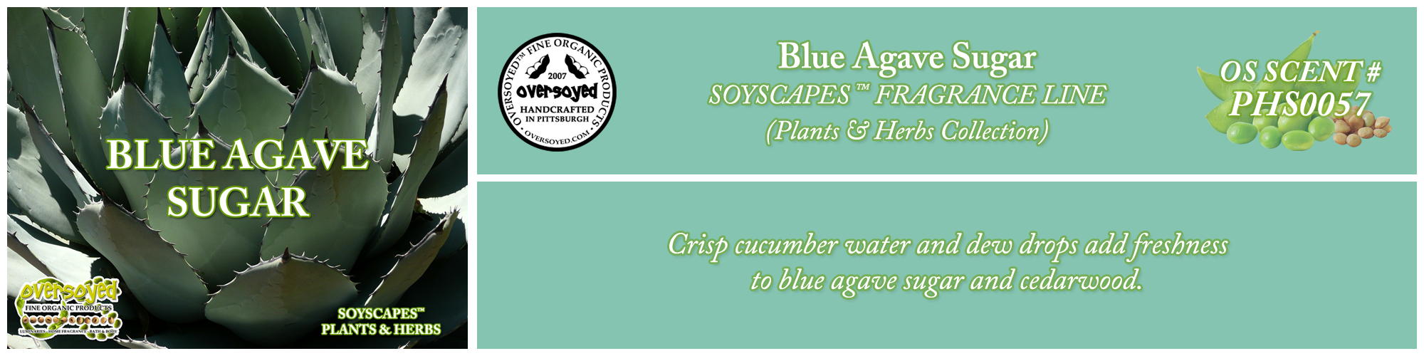 Blue Agave Sugar Handcrafted Products Collection