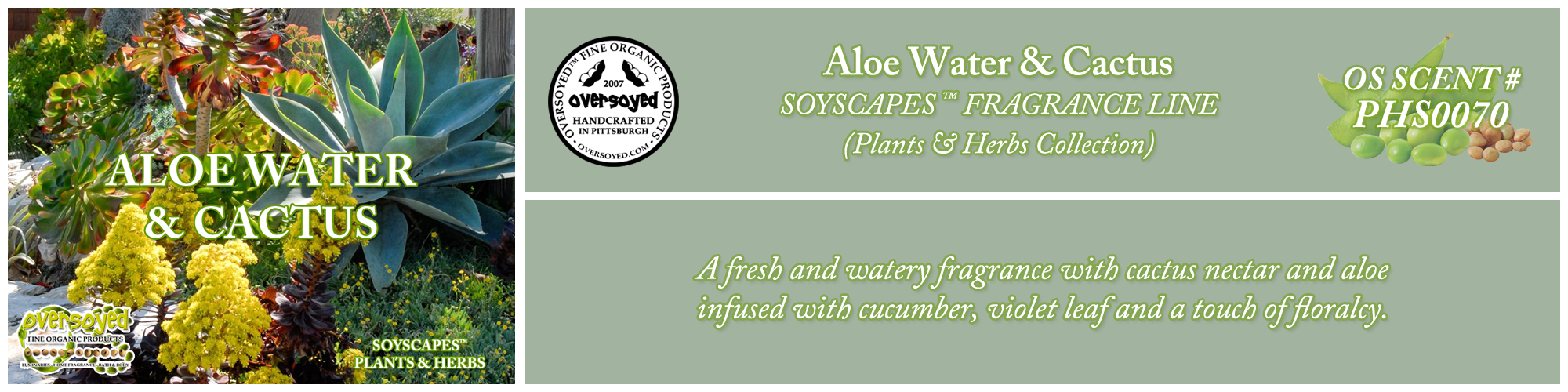 Aloe Water & Cactus Handcrafted Products Collection