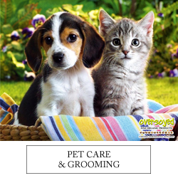 OverSoyed Fine Organic Products - Pet Care & Grooming