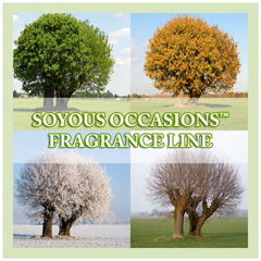 OverSoyed Fine Organic Products - Soyous Occasions Seasonal Fragrance Line