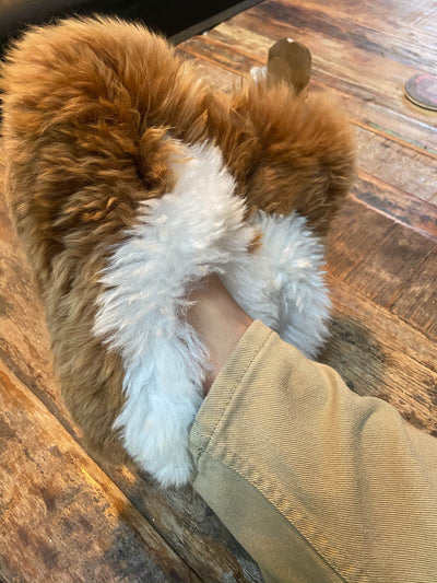 Suri Alpaca Unisex Slippers Handcrafted In Peru
