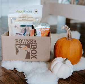 Bowzer Box - A monthly box of goodies for your dog