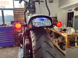 Curved license plate mount with LED lights